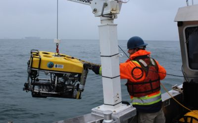 SEAMOR's Mako assisted dive team in high current area